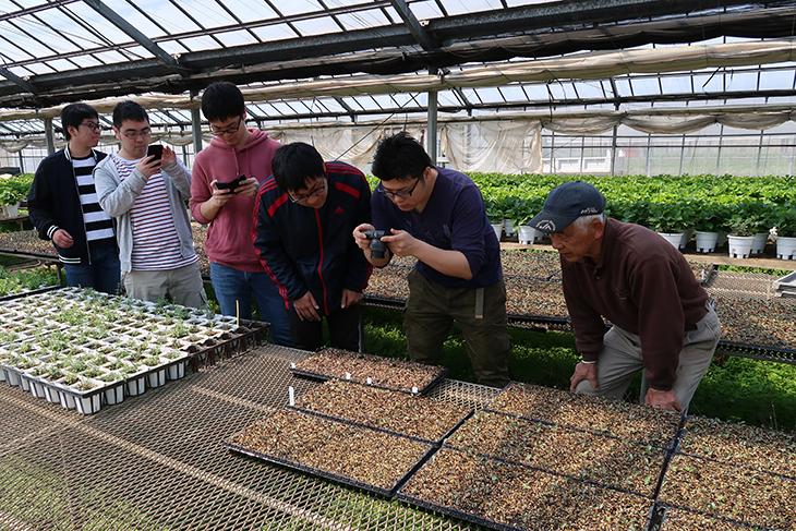 [電気工学科]古賀市特産スイーツコーンの種子にプラズマを照射 大規模実証実験が2年目に突入!