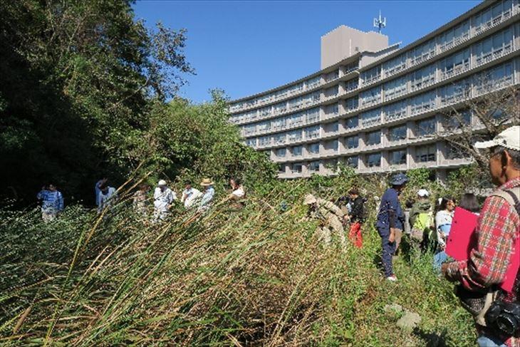 [社会環境学科]自然観察会と人丸公園ビオトープ検討委員会との交流会を開催しました!